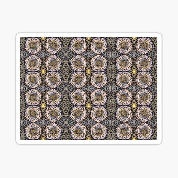 Orbea variegata - motif Sticker