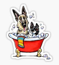 German Shepherd & Boston Terrier in the Bath Sticker
