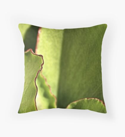 Red Boarders Throw Pillow