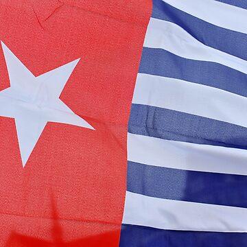 Flag West Papua by stuwdamdorp