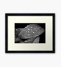 OnePhotoPerDay Series: 137 by L. Framed Print
