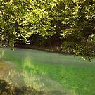 Grza lake by aleksandra15