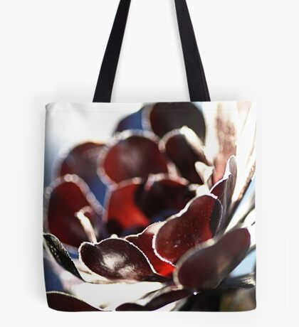 Succulent  in the Spotlight Tote Bag