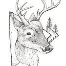 Sweet Deer by makaylasophia