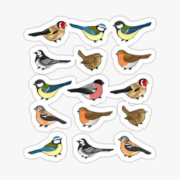 The birds are still singing Sticker