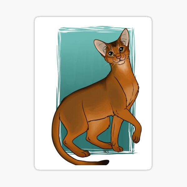 Abyssinian Sticker