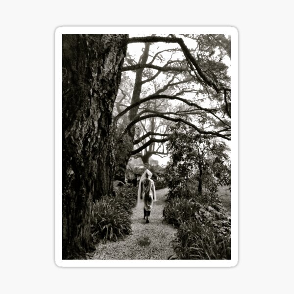 Mystery lady in the mist Sticker