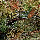Garden Bridge by Ray4cam
