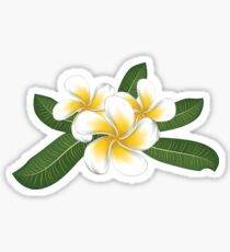 White plumeria with leaves Sticker