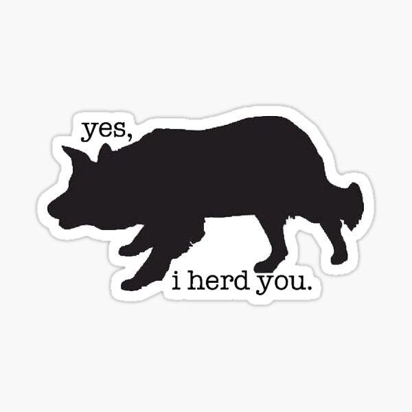 border collie herding sticker  Sticker