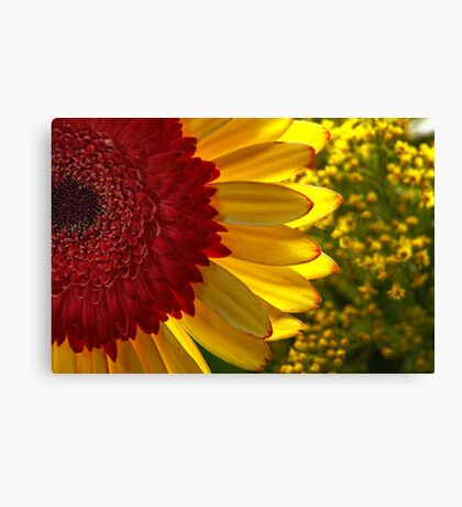 Bobs Funtime Flower Parade #1 Canvas Print
