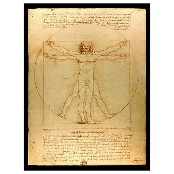 Da Vinci Art Vitruvian Man Anatomy Design Code Simplicity Ultimate Sophistication by GabiBlaze