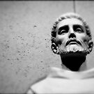 St. Francis of Assisi - Friend to animals by chrissylong