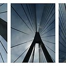 The Anzac Bridge - triptych by Peter Zentjens