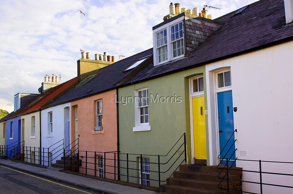 Colourful Cottages by Lynne Morris