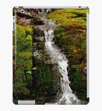 Mossy Falls,South Hobart,Tasmania iPad Case/Skin