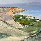 Maslin Beach Oil Sketch  by Pieter Zaadstra