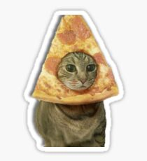 Cat with Pizza Head Sticker