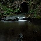 Weycroft Weir von widdy170