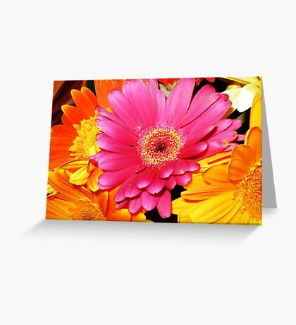 Bouquet of Gerberas- a gift Greeting Card
