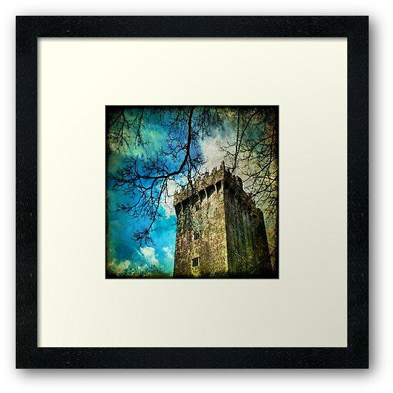 Blarney Castle, Ireland by Lucy Martin