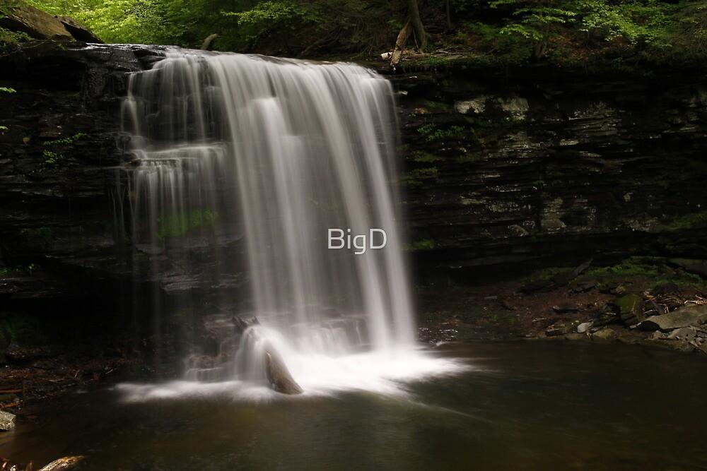 Harrison Wright Waterfalls-Ricketts Glen State Park by BigD