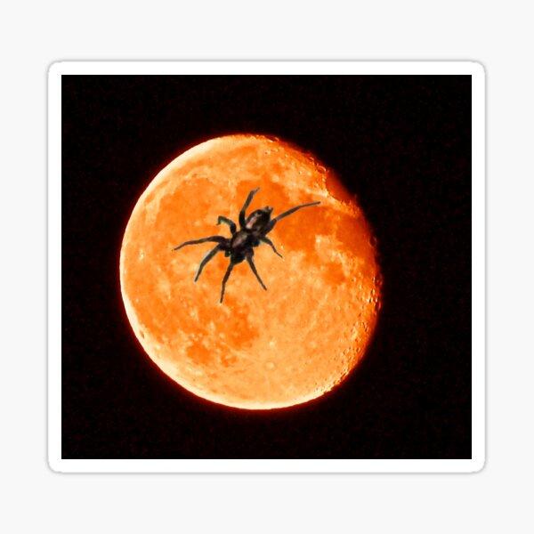 Spooky Spider On The Orange Moon Sticker
