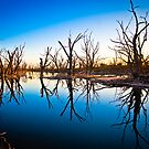 Dying to be here.......... by Dave  Hartley