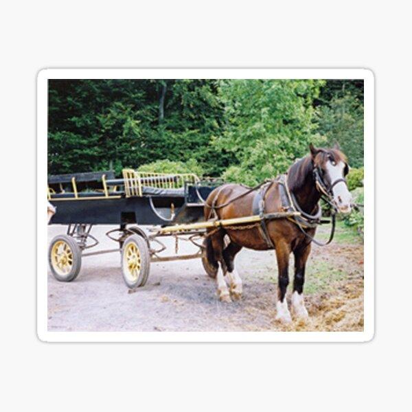 Duke & Cart Sticker
