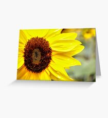 Happy Faces 1 Greeting Card
