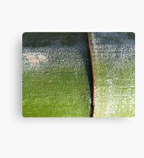 Aurora bamboo Canvas Print