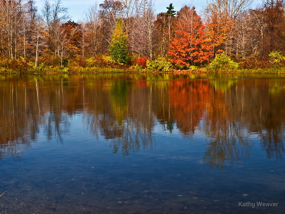 Presque Isle Autumn - Erie, PA by Kathy Weaver
