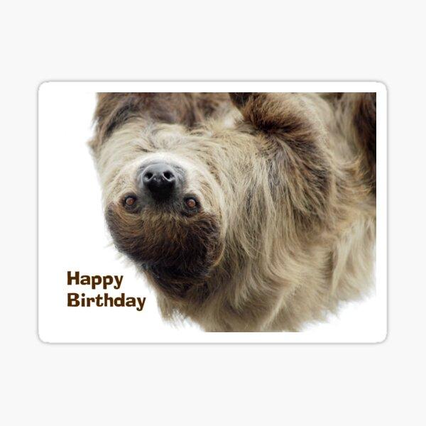 Sloth Birthday Card Sticker