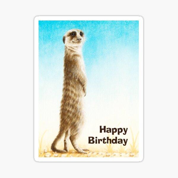 Meerkat Birthday Card Sticker