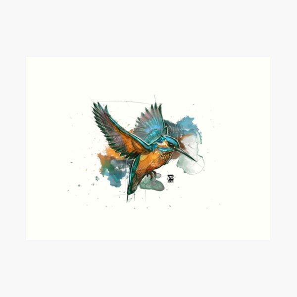 kingfisher sketch psdelux Art Print