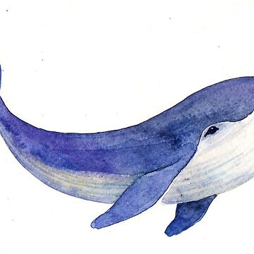 Whale by VVilka