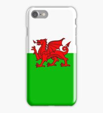 Flag Of Wales iPhone Case/Skin