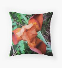 Our First Iris of the Season  Throw Pillow