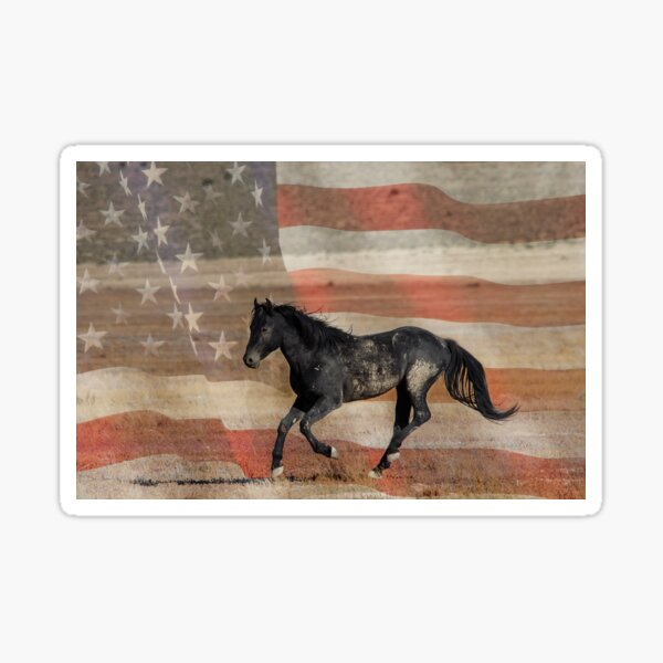 Freedom Run  Sticker