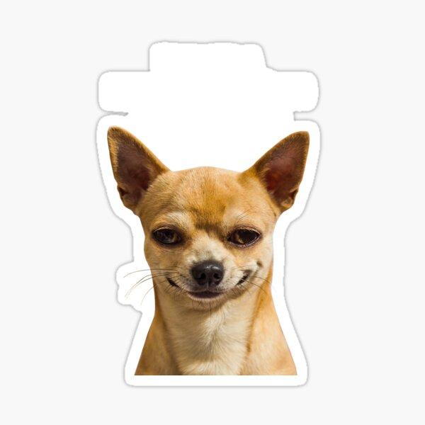 Psycho Dog Sticker