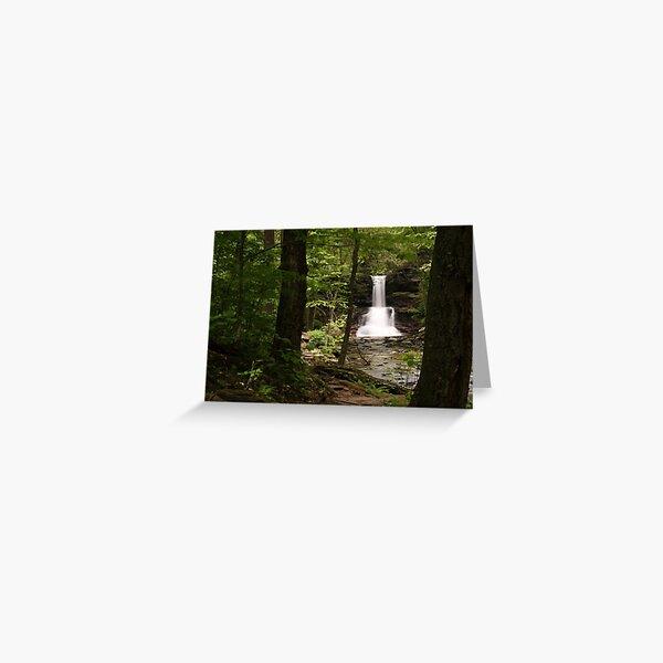 Sheldon Reynolds Waterfalls-Ricketts Glen State Park Greeting Card