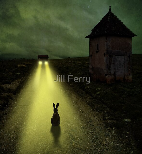 Caught in the Lights by Jill Ferry