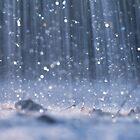 Summer Rains by KAVU