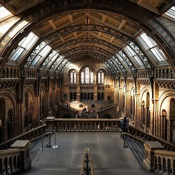 London Natural History Museum by fourretout