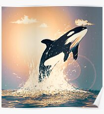 sunset orca Poster