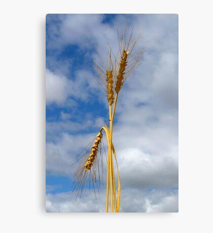 Wheat Stalk Statue Canvas Print