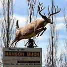The Hanson Buck,Statue,Bigger,Sask,Canada by MaeBelle