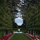 Pergola, Larnarch Castle-Dunedin-New Zealand by redkitty