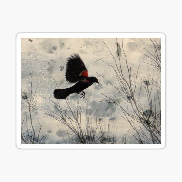 Red Wing Blackbird Sticker