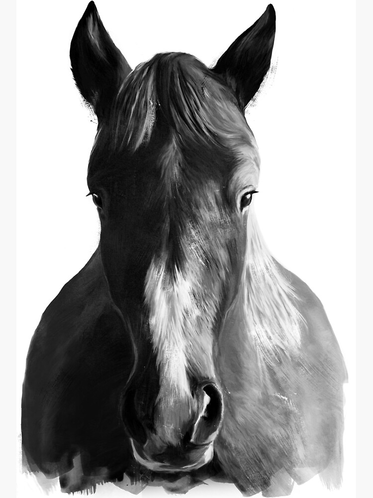 Horse by AmyHamilton